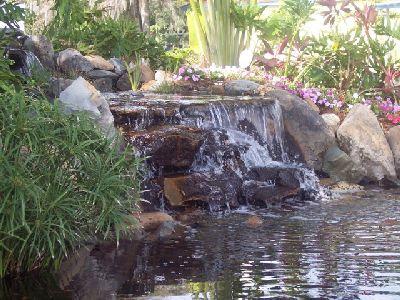 Bog filter waterfall living waters pond garden for Bog filter design