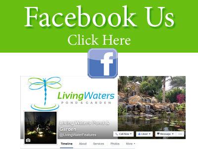 http://livingwaterfeatures.com/wp-content/uploads/2011/11/FB-400x300.jpg