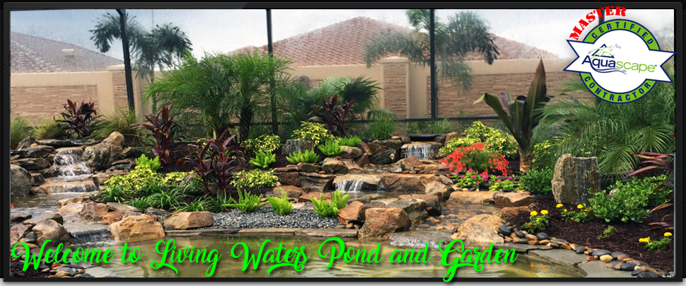 Welcome to living waters pond and garden