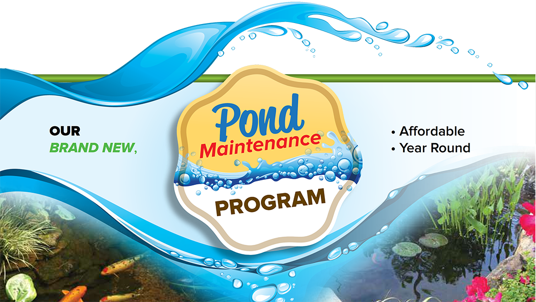 pond-maintenance-program-small_1_orig
